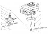 Keilriemen, Antriebsriemen Mulch-Rasenmäher AS 460 AS Motor